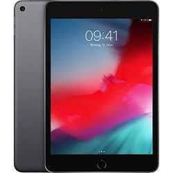 Apple iPad mini 5 (2019) WiFi 64GB space gray EU MUQW2__/A
