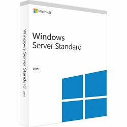 DSP Windows Svr Std 2019 64Bit English 1pk DSP OEI DVD 16 Co